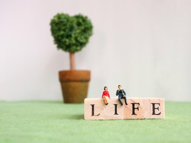 生命保険で運用イメージ