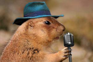 歌うこと健康効果2